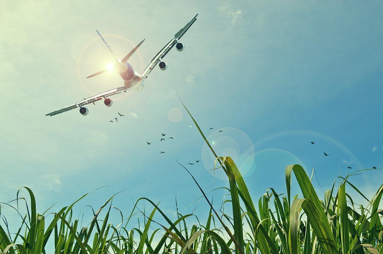 Avión y ecología